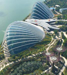 Biotecnologia Singapore