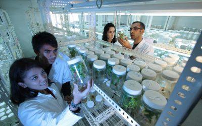 Biotecnología: en pocos el poder de decidir el futuro de muchos